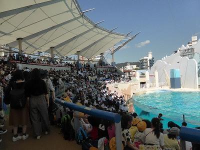 須磨海浜水族園のイルカライブ館