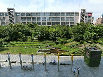 新梅田シティ北側の「花野」