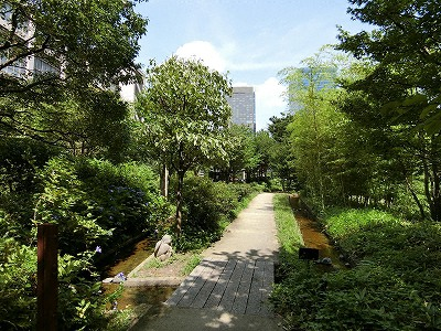 新梅田シティの「新・里山」