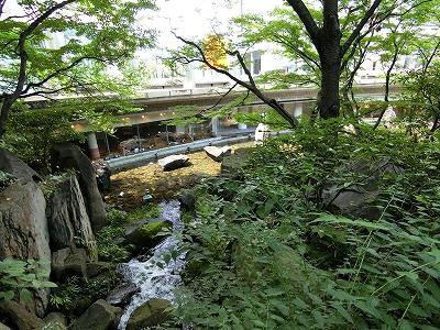 新梅田シティの中自然の森
