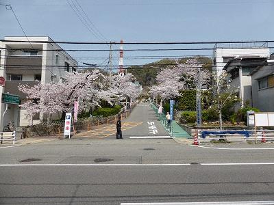 神戸市水の科学博物館入口と市道山麓線