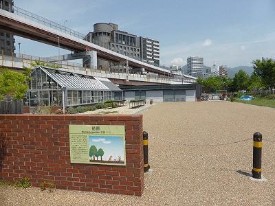 神戸震災復興記念公園(みなとのもり公園)苗圃