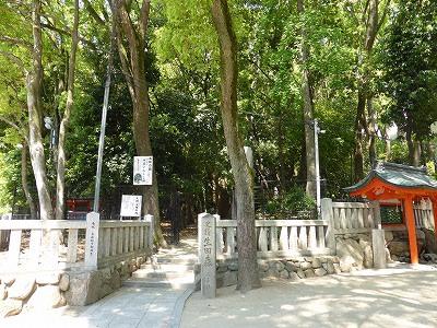 生田神社裏の生田の森