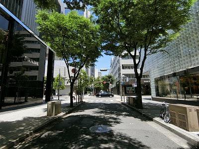 ブランドショップと街路樹のある神戸旧居留地