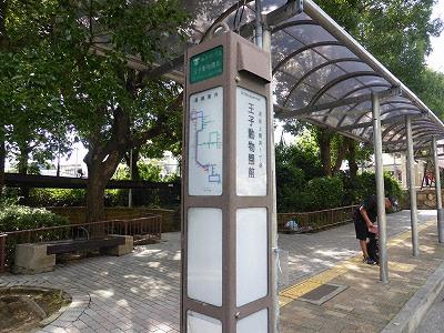 神戸市バスの王子動物園前バス停